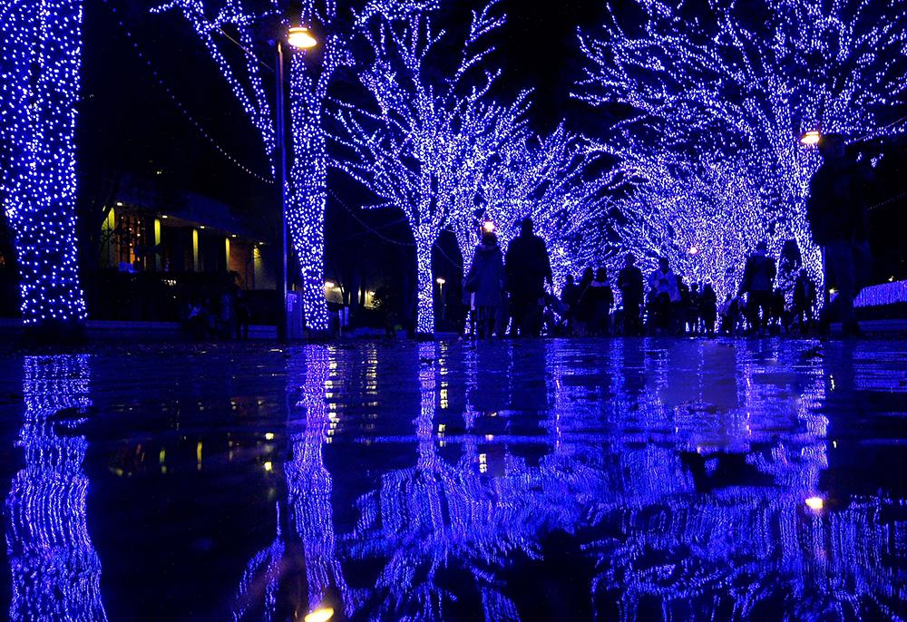 「青の洞窟 SHIBUYA」過去開催の様子
