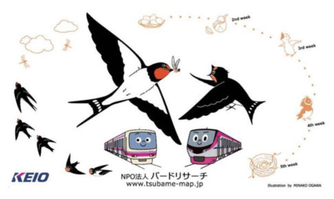 井の頭線・京王線の各駅でツバメのフン受け板を設置