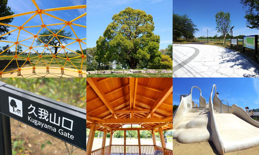 高井戸公園が6/1に追加開園!北地区エリアがフルオープンします【施設や入口まとめ】