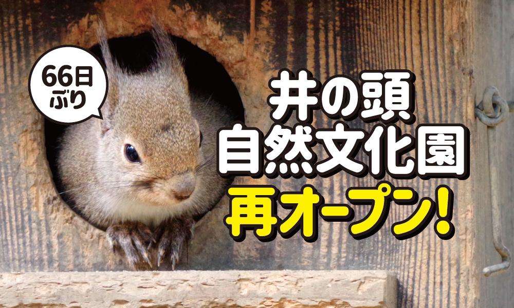 井の頭自然文化園再オープン