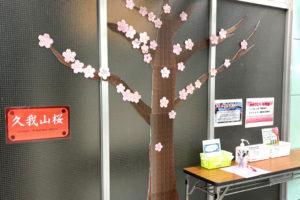 卒業・入学「おめでとう」を満開に!井の頭線・久我山駅で胸アツな桜が咲き始めました!