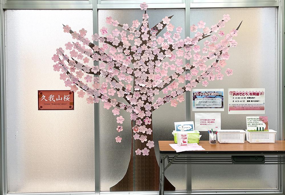 【9日目】3/5(金)の久我山桜