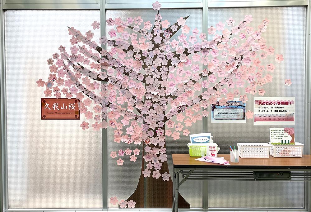 【13日目】3/9(火)の久我山桜