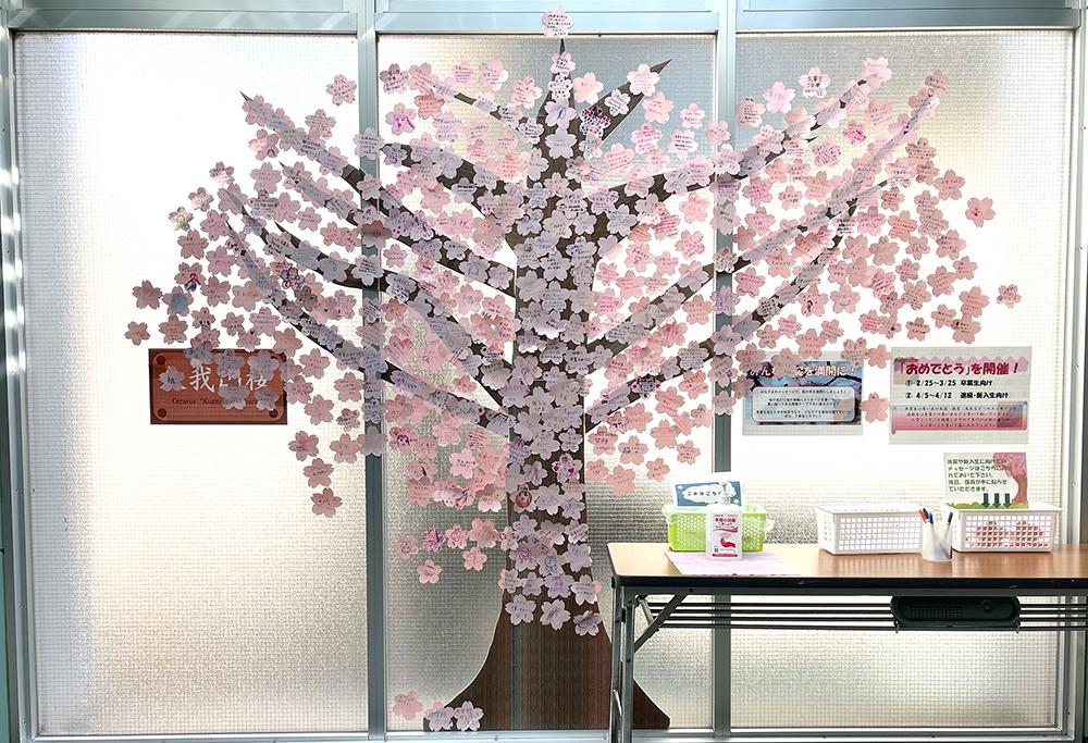 【14日目】3/10(水)の久我山桜