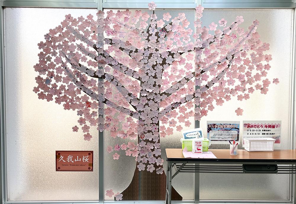 【15日目】3/11(木)の久我山桜