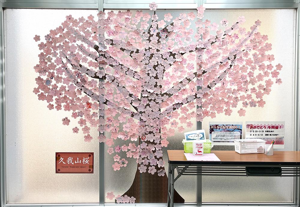 【16日目】3/12(金)の久我山桜
