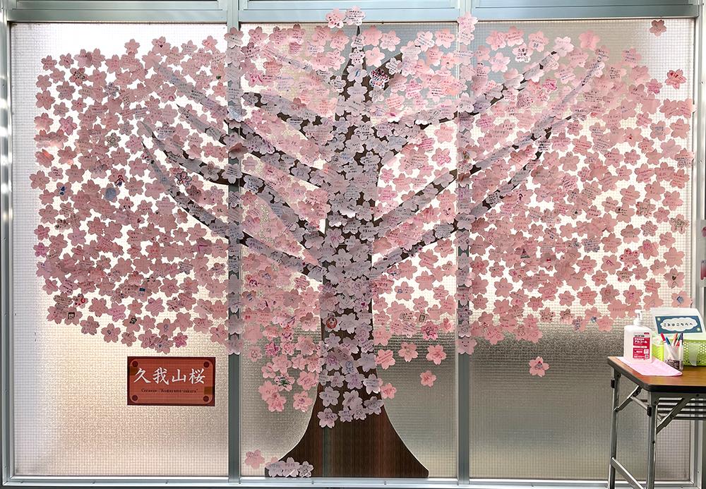 【22日目】3/18(木)の井の頭線久我山駅の久我山桜