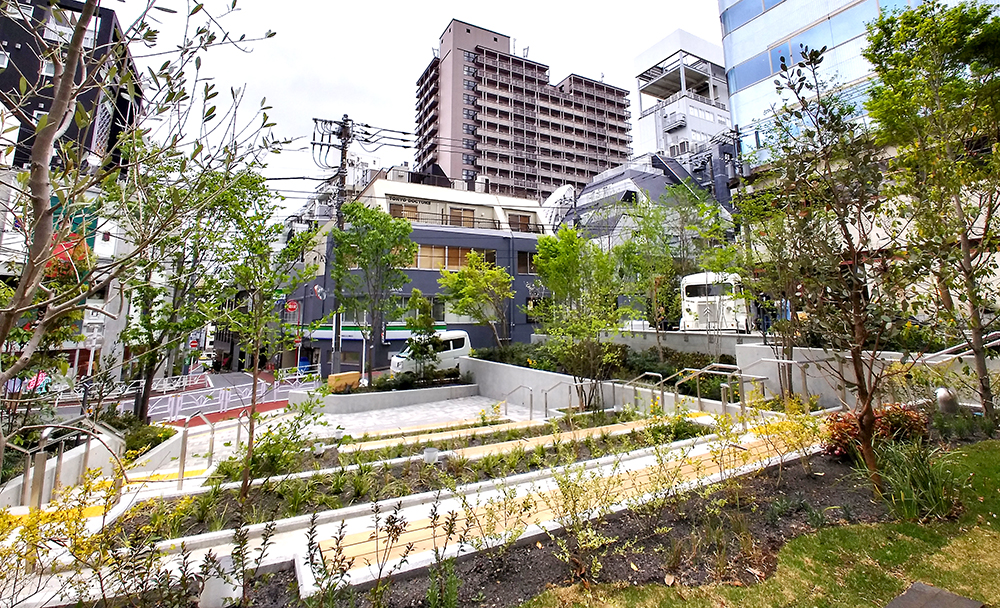 リニューアルした渋谷区北谷公園のステップエリア