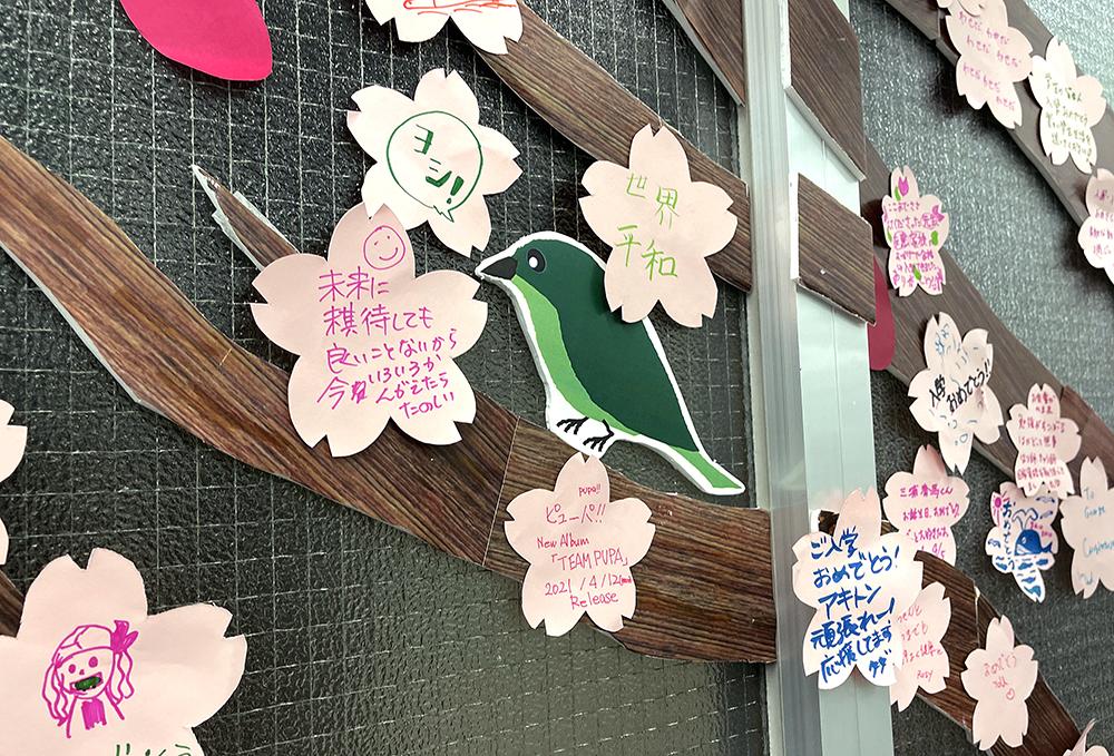 4/5からスタートした久我山桜「入学・進級編」には小鳥さんも登場!