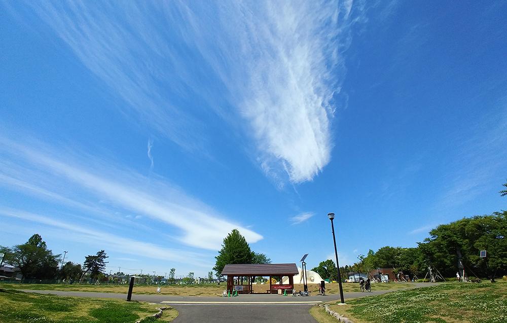 都立高井戸公園の富士見丘入口から芝生広場へ